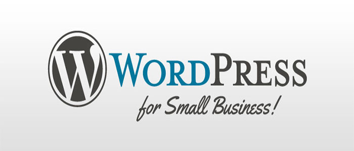 Why WordPress Websites Best For Small Businesses