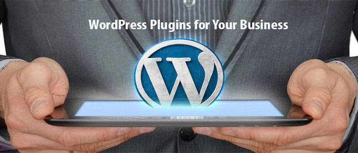 7 Must have WordPress Plugins for Your Business