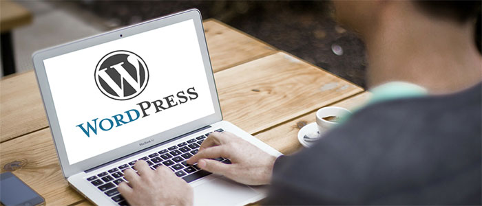 WordPress for Developing Business Website